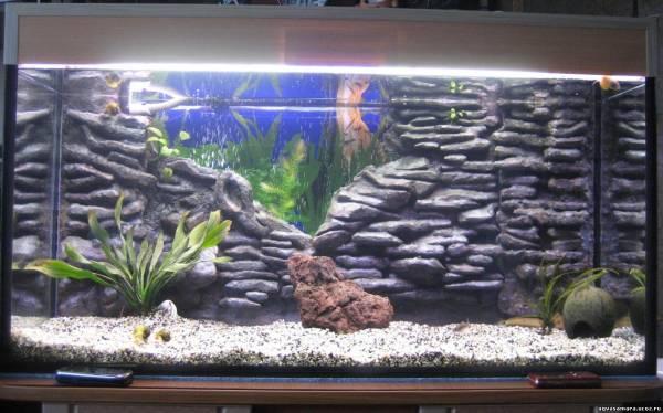 Фон для аквариума своими руками фото